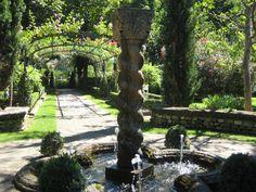 Garden - Provence