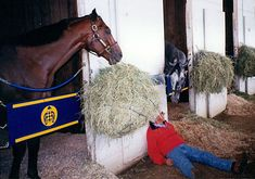 If Bob Baffert's friends thought he was goofy, imagine what his Kentucky Derby winners Silver Charm and Real Quiet are thinking.