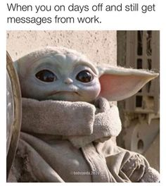 Yoda Meme, Yoda Funny, Work Memes, Work Humor, Funny Laugh, Hilarious, Yoda Images, Star Wars Jokes, Office Humor