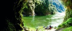 Travel the Whanganui River by kayak, canoe, jet boat or paddle steamer. Jet Boat, Great Walks, Down The River, Shopping Street, Steamer, Hush Hush, Canoe, Paddle, Kayaking