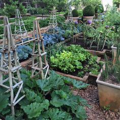 """Christopher Greig's most perfect vegetable garden at Beechwood -  organic, lush and overflowing with fabulous produce, plus it's a true work of art🍏🍏🍏…"""