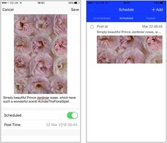Flowerona Tips : Use Latergramme to Upload & Schedule your Instagram Posts | Flowerona
