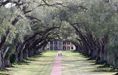 Oak Alley Plantation, Louisanna --been there. It was truly amazing!