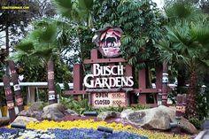 bush gardens- ive been