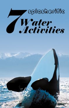 Go whale watching, kayak, grab a stand up paddle board, go fishing + more water activities in Victoria B.C. #water #summer #activity #victoriabc #explorevictoria #canada #exploreBC | www.tourismvictoria.com
