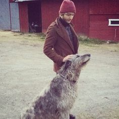 The greatest hound around.