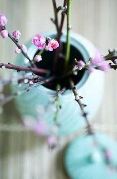 voorjaar....