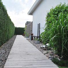 Bildresultat för trädgård trägång