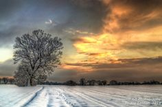 """""""Field of Snow - Orange Sky"""" won a """"highly commended"""" award in the SINWP Spectacular Landscapes competition in February 2014. It is a colour version of the award-winning monochrome """"Field of Snow"""""""