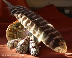 Animal Healing with Smudging: clearing your house, office, your energy field and that of your animal companion can help everyone maintain well-being. Here's why: http://reikishamanic.com/2015/01/07/animal-healing-with-smudging/