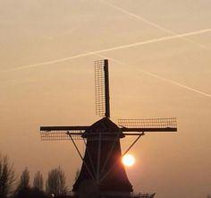 kleine dingen (onderweg) om blij van te worden - blog. Molen De Passiebloem, Zwolle