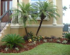 Tropical Landscape Design, Pictures, Remodel, Decor and Ideas - page 18