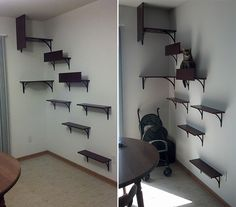 """Simple, cheap, DIY climbing shelves for cats. (Jackson Galaxy suggests continuing them above the door to create a """"cat superhighway."""")"""