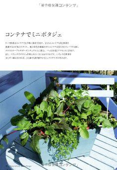 Amazon.co.jp: 花咲くポタジェの庭 花と野菜のガーデンスタイル: 難波 光江, 横田 秀樹: 本