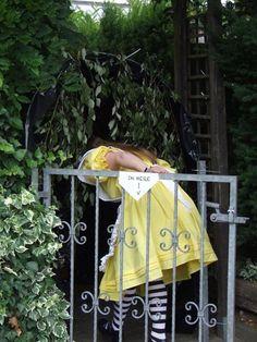 Alice, yellow dress