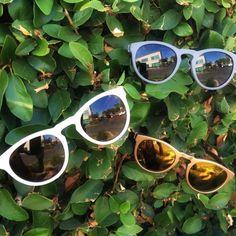 REKS: unbeatable value & exceptional lenses!