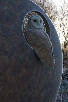 Close up of Barn Owl by Simon Gudgeon 77 x 78 x 23 cm (height x width x depth)