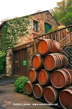 Buena Vista, California's oldest winery founded in Sonoma, 1857