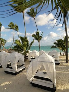 Privilege beach at Ocean Blue & Sand resort in Punta Cana, Dominican Republic. One of the best holidays ever.