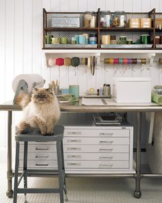 Nice shelving, great flat files, cute cat.  Martha Stewart Living.