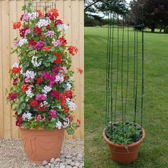 Amazing Vertical Garden Ideas about Climbing Plants in Pots # Amusements # Amazi… – Garten ideen Container Flowers, Diy Garden, Garden Design, Plants, Flower Garden Design, Diy Trellis, Vertical Garden, Container Gardening, Climbing Plants