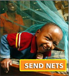 Nothing but Nets is a wonderful organization that raises awareness and funds the fight against malaria.
