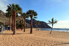 Top Things to Do in Tenerife – Canary Islands Stuff To Do, Things To Do, Popular Holiday Destinations, Cheap Holiday, Parc National, And So The Adventure Begins, Canary Islands, Luxury Travel, Beautiful Beaches