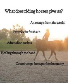 Horse Riding Benefits.