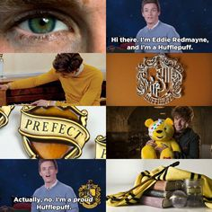 Harry Potter Houses, Harry Potter Books, Hogwarts Houses, Hufflepuff Pride, Ravenclaw, Beginning Reading, Eddie Redmayne, Hermione Granger, Stand Tall