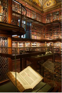 Morgan Library, USA  http://mentalfloss.com/article/51788/62-worlds-most-beautiful-libraries