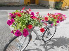 Mi vieja bicicleta