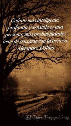 La inteligencia debería hacerle ver las causas de la tristeza y evitarlo a toda costa no buscarla.
