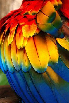 ~~infinite beauty... By pakalwaters~~