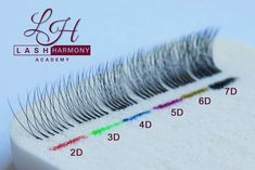 Lash comparisons