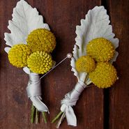 Fall Boutonnieres – Naturally Perfect Designs