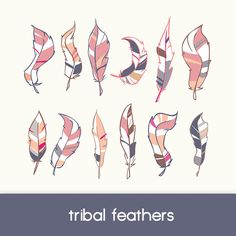 feathers clipart, tribal design