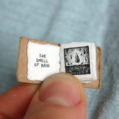 art and such evan   LIFE'S LIL PLEASURES... tiny, tiny books!