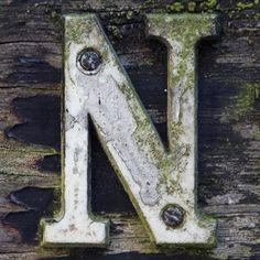 letter N by Leo Reynolds, via Flickr Letter N Words, Letter Symbols, Alphabet And Numbers, Alphabet Letters, Handwritten Typography, Vintage Lettering, Lettering Design, Stencil Lettering, Cute Letters