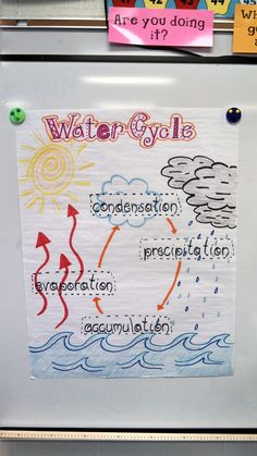 An anchor chart visual of the Water Cycle for a second grade class that students can refer too. Kindergarten Science, Elementary Science, Science Classroom, Teaching Science, Science Education, Physical Science, Student Teaching, Elementary Education, Classroom Ideas