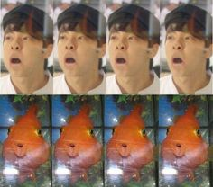 Can't stop laughing!!! Hae why so cute???? I see no difference