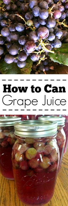 How to Can Grape Juice - Canning grape juice is really simple and a tasty way to make your own fresher, healthier grape juice at home!