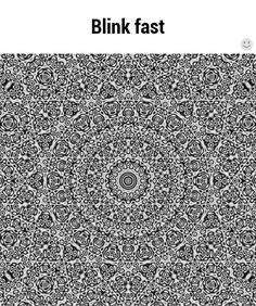 Take a look at this amazing Trippy Mandala Optical Illusion illusion. Browse and enjoy our huge collection of optical illusions and mind bending images and videos. The Meta Picture, Beste Gif, Eye Tricks, Brain Tricks, Images Gif, Gif Animé, Animated Gif, Mind Games, Cool Stuff