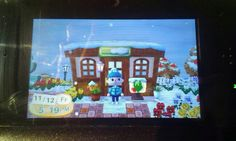 My town is in top 5 town ever! For Animal Crossing New Leaf