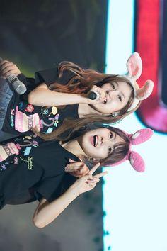 Sana and Momo Nayeon, Kpop Girl Groups, Kpop Girls, K Pop, Twice Group, Twice Once, Minatozaki Sana, Twice Sana, Hirai Momo