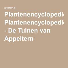 Plantenencyclopedie - De Tuinen van Appeltern