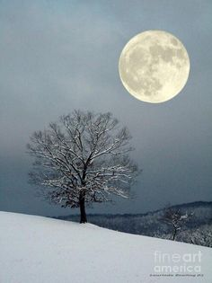 Full moon in winter.