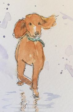 Spaniel ORIGINAL Miniature Watercolour 'Splashing Fun' view here: https://www.etsy.com/uk/listing/584473131/spaniel-original-miniature-watercolour?ref=shop_home_active_1