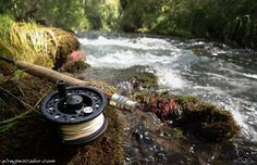 Flyfishing Tajuña River