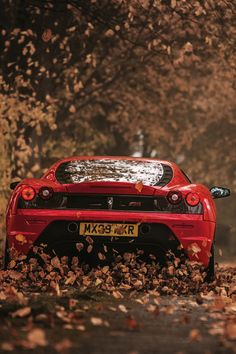 The Ferrari 458 is a supercar with a price tag of around quarter of a million dollars. Photos, specifications and videos of the Ferrari 458 Lamborghini Cars, Ferrari Car, Ferrari F430 Scuderia, Ferrari Laferrari, Supercars, Audi Supercar, Audi R8, Hot Cars, Volkswagen