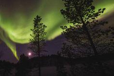 northern-lights-norway-3-claudia-regina